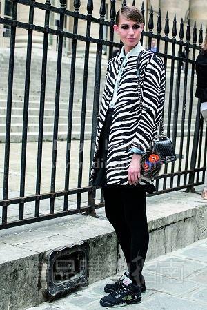 斑马纹--时尚时装